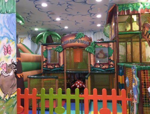 Playground Personalizzati e Gonfiabile Combinato: La Storia Di Giulia